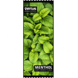 Karta / wkładka aromatyzująca VIRTUS - Menthol - 1 -  - 1,23zł